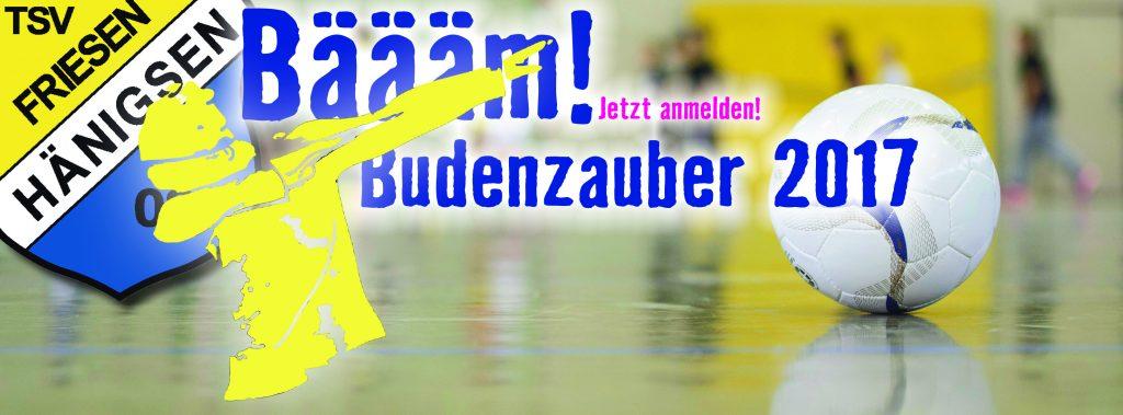 TSV FH - Internetbild Jugendhallenturnier 2017